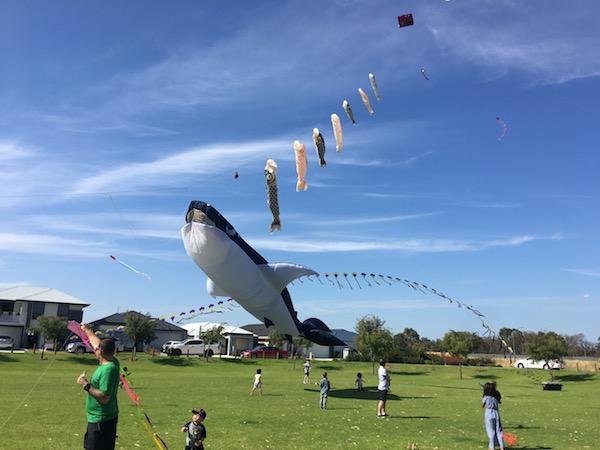 2019 Community Kite Festival Kites whale shark